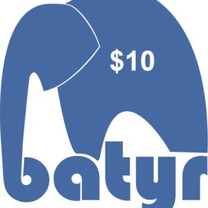 10batyr