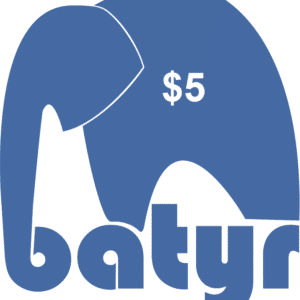 5batyr