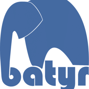 batyr Donations